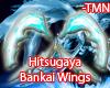 Hitsugaya bankai wings.
