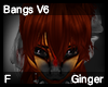 Ginger Bangs V6