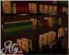Loft Living Bookshelf
