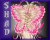 {SP} Blonde Butterfly