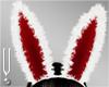 -V- Bunny Ears Red