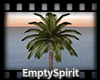 Animated Palm Tree