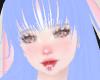 Ice blue Neko