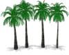 2021 palm tree line