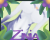 Z| Zorra Kini