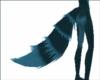 Mystic Blue Tail