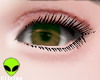 K| Eyes X
