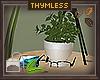 MOSS Tbl Plant/Extras