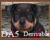 (A) Rottweiler