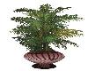 Malt Plant