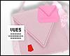 v. Duo Envelope Bag