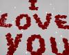 #Y I LOVE YOU-Red Petals