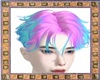 Pink & Blue Hairstyle