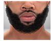 Gates Beard