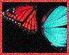 ~Butterflies Flying~