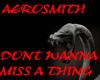 P-AEROSMITH-miss a thing