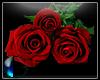 |IGI| Rose v1