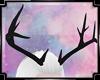 {Ms} Deer Horns e
