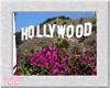*CC* WV ~ Hollywood #2