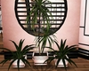 pink black plant 3in1