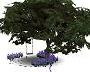 Tree w Swing an Poses
