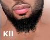 Beard DOPE 03
