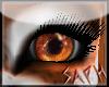 Custom Red Panda Eyes