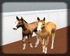 {D}Baby Horse's