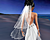 !Dbl Diamond Silk Veil