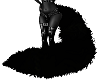 Thick Black Cats Tail