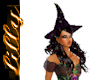 Sexy Witch hat