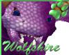 Wolfshire Purple Drake
