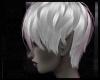 Silver Kaiya