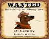 Wanted Scooby
