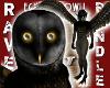 (M) EGYPTIAN OWL BUNDLE!