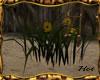 ~H~Swamp Flowers