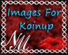 ~NM Koinup HM Bundle