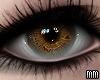 Eyes - Warm
