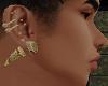 Gold Kings Ear Plugs