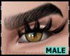 Male Long Lashes