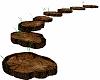 Curved Sliced Log Path