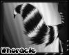 Romp Tail v6