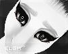 E - Lightmare Brows