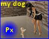 Px My little dog animate