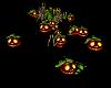 Pumpkin Patch Dance