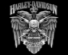 MC Harley Picture