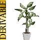 3N: DERIV: Plant 25