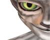 Green feline eyes M