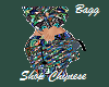 Designer Match Bagg