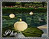 :P: MOON LAKE CANDLES